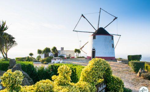The Windmill Trail